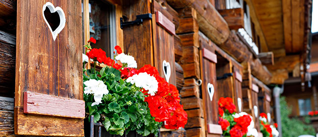 Wooden hut with flowers